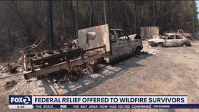 Federal agencies offer relief to wildfire survivors.