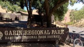 Illegal marijuana grow operation found in Hayward's Garin Regional Park