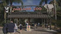 After 50 days of lockdown, Oakland Zoo will again re-open