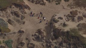 SFFD responds to cliff rescue at Fort Funston