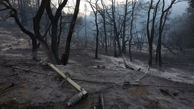 Even modest rainfall can cause dangerous debris flows in wildfire burn zones: study