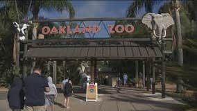 Oakland Zoo closes because of power shutoffs
