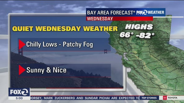 Chilly, foggy morning; sunny later