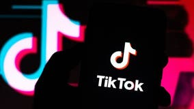 TikTok asks court to intervene as Trump order looms