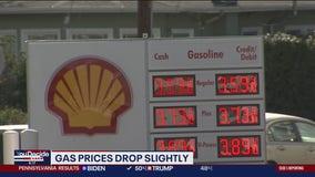 Average US gas price falls 3 cents to $2.19 per gallon