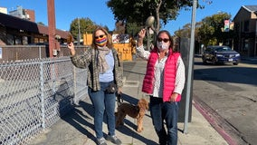 Cars honk, phones buzz: Liberal Bay Area reacts with joy after Biden, Harris win election