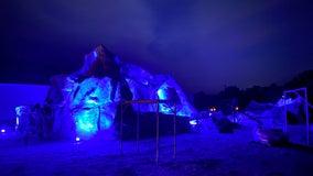 Napa family recreates Disney's famous Matterhorn ride in elaborate backyard roller coaster