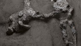 Bodies of man and his slave unearthed from ashes at Pompeii after almost 2,000 years