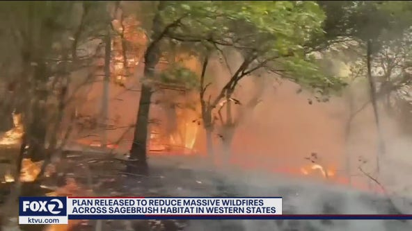 Plan released to reduce massive wildfires across western states