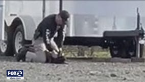 Vacaville officer caught on video beating K-9 was 'correcting' dog