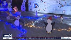 Sonoma family transforms grass field into Disney, Star Wars winter wonderland