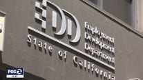 EDD an easy target, fights to crack down on bogus claims