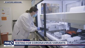 Bay Area scientists work to identify COVID-19 variants