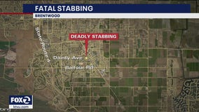 Brentwood police investigating homicide after son stabs father