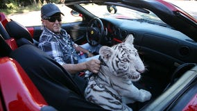 Judge orders 'Tiger King' zoo to turn over big cats to federal government