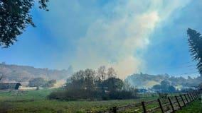 Firefighters battling several blazes in Santa Cruz County