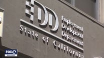 EDD employees quitting in droves, loses 14% of workforce since March