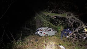 Family rescued after vehicle plunges down ravine in Castro Valley