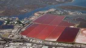 U.S. EPA drops challenge of Redwood City salt ponds protection under Clean Water Act