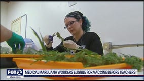 Medical marijuana workers eligible for vaccine before teachers