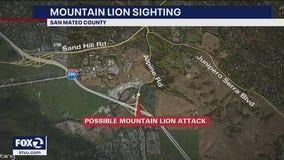 Possible mountain lion attack near Portola Valley