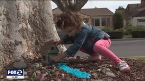 Strangers help young girl's fairy tale come true in Burlingame