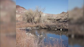 Nevada town sues for rights to water leaking from US canal