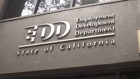 California appoints special counsel for unemployment fraud