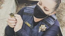 Hayward animal control officer plays mother duck sounds on cell