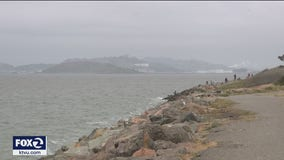 Bay Area conservationists say region much healthier, but more action required to save the earth