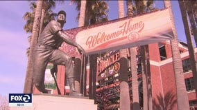 Play ball! Fans excited to cheer on San Francisco Giants live and in person