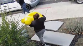 Mountain View police arrest three suspects in theft of popular rubber duck statue