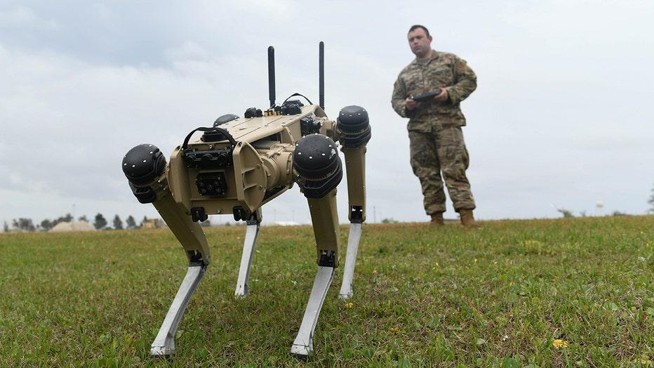 USAF_robot_dog_2.jpg
