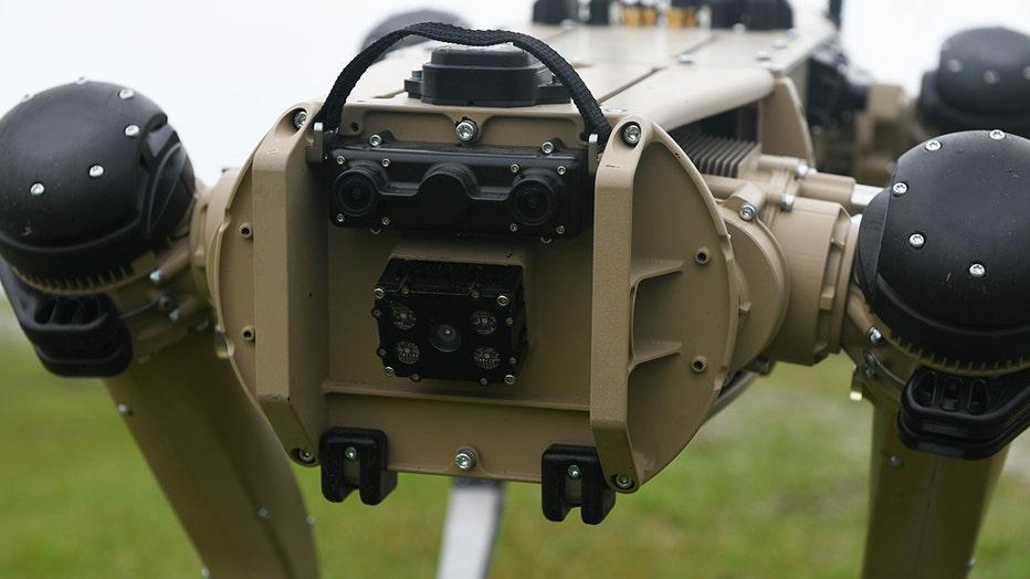 USAF_robot_dog_3.jpg