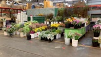 Mother's Day at SF Flower Mart feels normal says vendors, shoppers