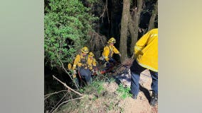 Solo vehicle crash sparks small brush fire near Saratoga