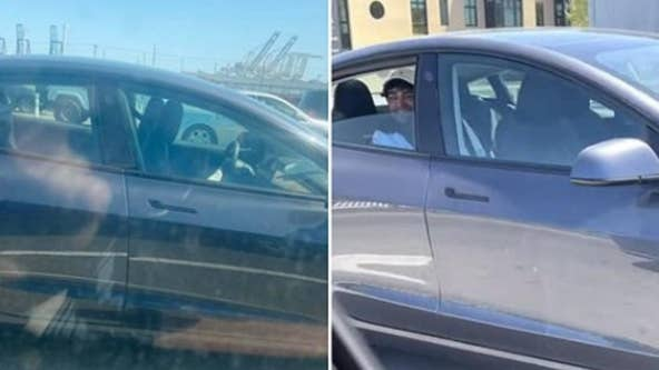 Man seen riding in the back seat of Tesla with no driver