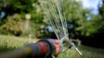 Healdsburg bans outdoor watering as drought conditions worsen