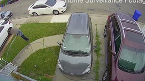 Man watering his lawn in San Pablo robbed of $5K during home invasion