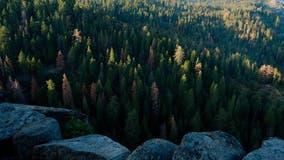 San Jose man falls 500 feet to his death while hiking Sequoia National Park