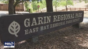 East Bay Regional Park offers a peaceful escape to the great outdoors