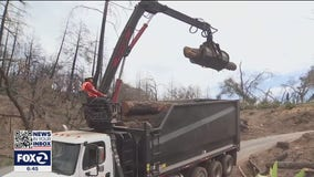 PG&E hauls away dead trees from 2020 wildfires