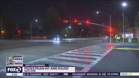 Man killed after being struck by pickup truck while jaywalking in San Jose