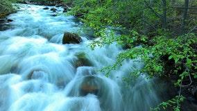 Beloved Camp Tawonga staffer from Berkeley drowns in river near Yosemite