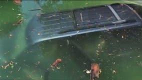 Walnut Creek officer saves elderly man who drove into pool