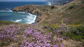 Woman dies after fall from hiking trail bluff in Pacifica