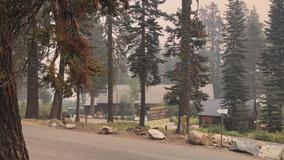 Berkeley's popular Echo Lake Camp appears intact