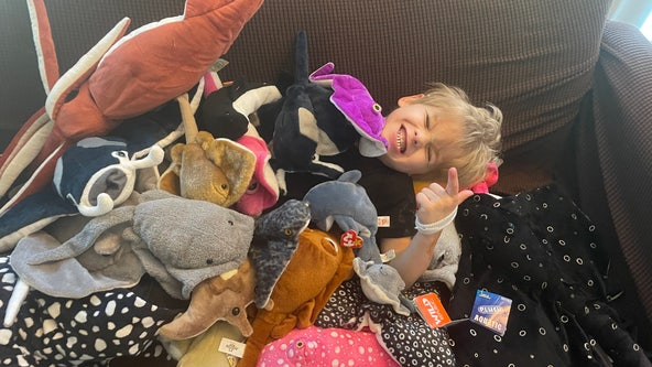 With only $2 in her bank account, a mom sewed a manta ray plush gift for her son. Then it went viral on Reddit