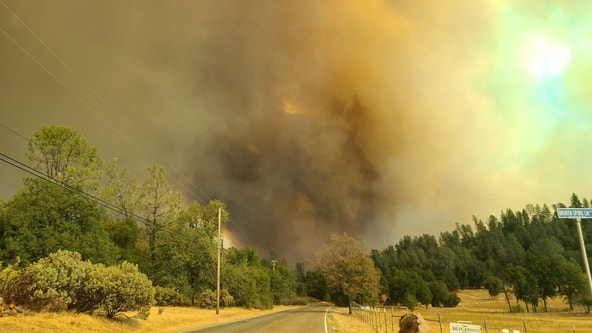 Palo Alto woman charged with starting Fawn Fire in Northern California