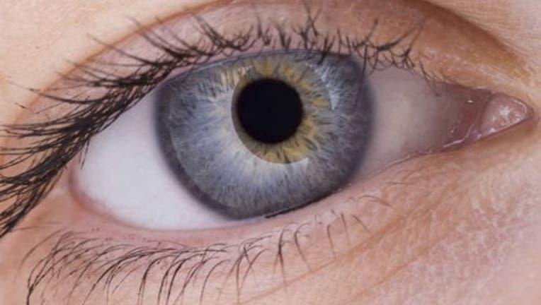 ffedbfc1-0_21_450_Eye_1443751384990-404023.jpg